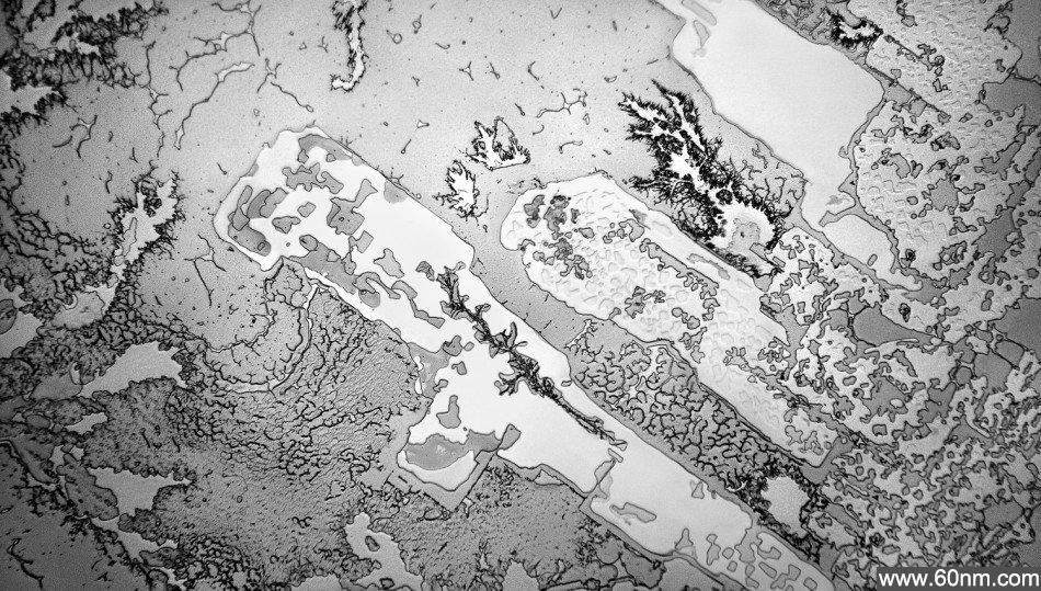 显微镜下人类的眼泪:酷似地球航拍图_大千世界