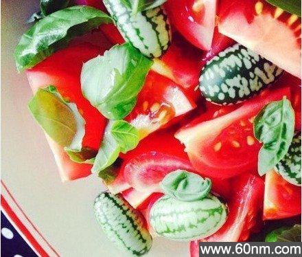 世界上最小的西瓜你见过吗?_大千世界
