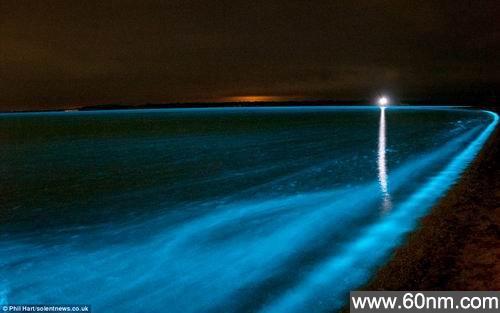 澳洲发现夜光湖 游泳者全身出现蓝色荧光_大千世界