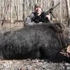 美国男子擒获450斤重野猪可享用一年_大千世界