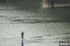 惊呆!小伙骑自行车高空走钢丝横跨湘江_大千世界