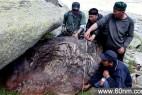 新疆发现陨石 重达30吨或居世界第三位_大千世界