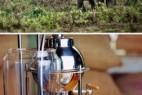 """世界最贵的咖啡:泰国""""象粪咖啡""""_大千世界"""