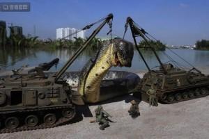 北京动物园百米巨蟒100多米长高清组图 胆小慎入