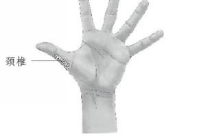 每天拉拉大拇指,一生难得颈椎病 ! !【十万疯传~】