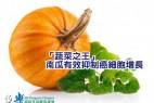 《研究:「蔬菜之王」南瓜有效抑制癌细胞增长》