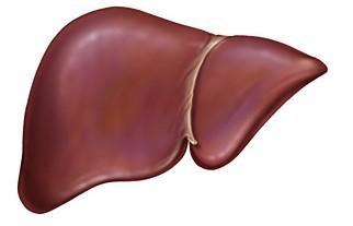 肝臟是否有病变 一看皮肤便知